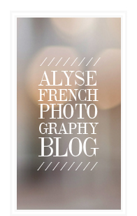 Alyse French Photography | Houston-Based Wedding and Lifestyle Photographer logo